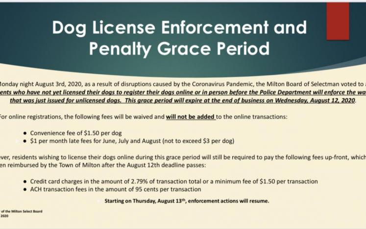 Dog License Enforcement and Penalty Grace Period